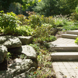 Landscaping Services Buffalo NY